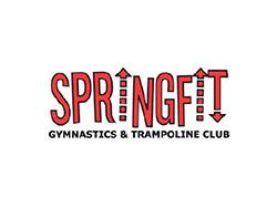 springfit-case-study